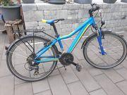 Mountainbike Winora Dash 24 21
