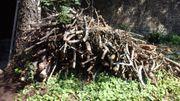 Holz für Lagerfeuer