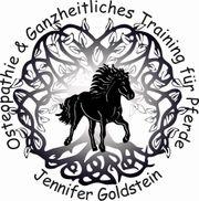 Osteopathie Ganzheitliches Training für Pferde