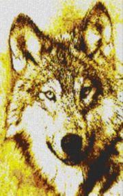 Vorlage für Ministeck Wolf 60x80cm