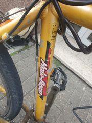 Sintesi Herren Mountainbike 21 Gang