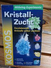 Kristalle züchten von Kosmos