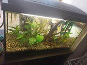 Aquarium mit Zubehör und Ersatzfilter