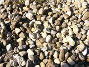 Kieselsteine zu verkaufen