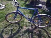 Mountainbike 28zoll