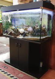 Aquarium mit Unterschrank Innenfilter Heizung