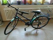 Hercules Damen Fahrrad