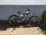 Downhill Bike Gr M - Young