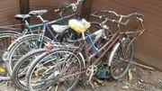 6 Fahrräder