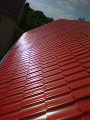 Dachdecker Dachrinne Dachreaparatur