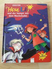 Buch Hexe Lilly und der