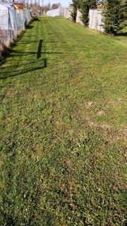 Garten Freizeit Grundstück