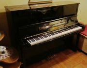 Klavier GRATIAE PU 120 E
