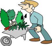 Suche Gütle Schrebergarten Gartengrundstück im