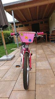 Fahrrad KTM Wild Cat 20
