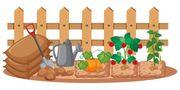 Suche ein Gartengrundstück in Neustadt