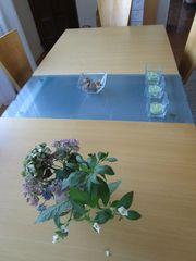 Wohnzimmertisch mit Glas-Einlagen ausziehbar 6-10