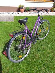 Trecking Fahrrad Prophete 28 tiefer