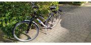 KTM Damen-Trekking-Rad