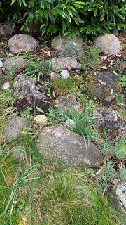 große Steine aus einem Steingarten