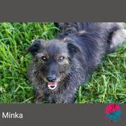 Minka - Treu Treuer Minka