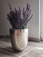 silberne Vase Neu