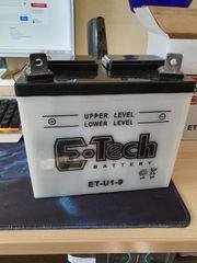 Rasentraktor Aufsitzmäher Batterie Batterie