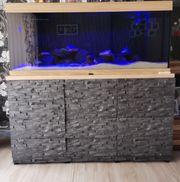 Komplett Aquarium 450 Liter Juwel