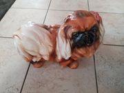 Porzellanhund H 26 cm B