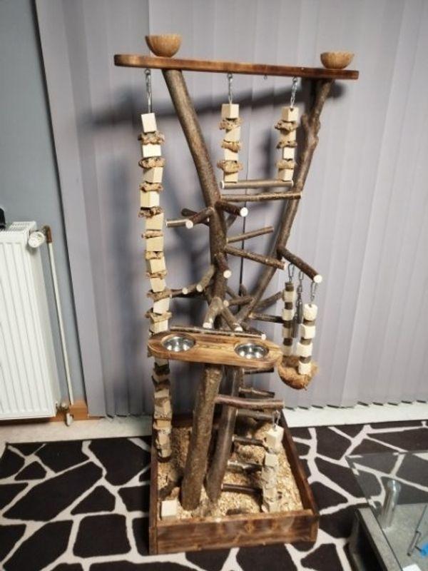 XXL Freisitz Papageien 170cm hoch