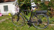 Pegasus Premio E Bike Herren