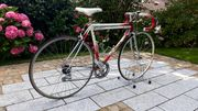 Rennrad Damen Titan Rarität