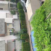 Gartenarbeit und Dienstleistungen