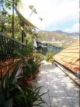 Bild 4 - Haus auf Madeira - Braunlage Hohegeiß