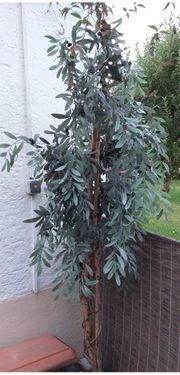 Olivenbaum künstlich