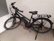 E-Bike Victoria e Trekking 8