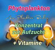 Phytoplankton Vitamine für Garnelen und