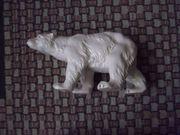Eisbär sehr Alt