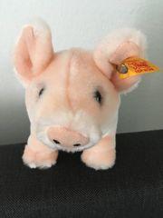 Steiff plüschtier Schweinchen Sue Kuscheltier