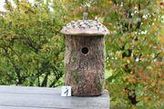 Nistkasten ökologisches Vogelhaus Baumstammnistkasten Vogelschutz