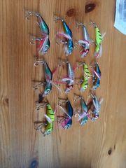 12 Wobbler angeln