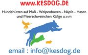 www kesdog de Hundehütten auf