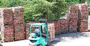 billiges Brennholz Kostenlose Lieferung in
