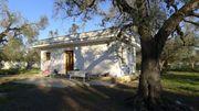 Bauernhaus Hof-schönes Anwesen