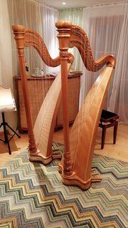 Musikunterricht für Erwachsene Stimmbildung Klavier