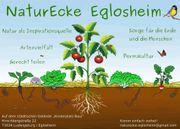 Permakultur in der Naturecke Eglosheim