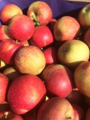 verkaufe Natyra Äpfel sehr empfehlenswetre