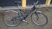 Bergamont City Rad