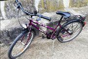 Fahrrad 24