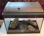 Aquarium Terrarium mit Abdeckung und